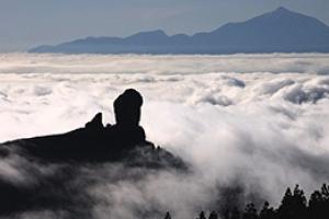 Gran Canaria Mountain Discovery
