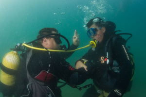 Scuba Diver Beginners Course-  SCUBA SUR