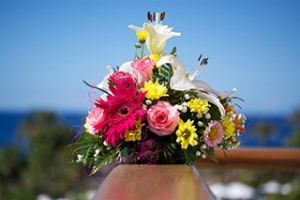 Velkomst med blomster