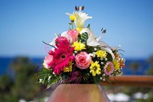 Willkommensgruß mit Blumen