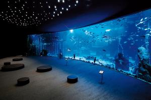 Akvariet Poema Del Mar