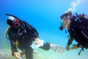PADI Scuba Diver Course- PUERTO RICO DIVING