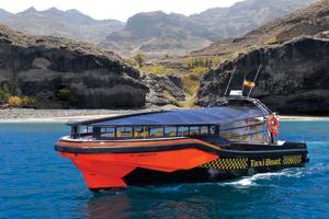MAGIC- Ausflug zur Wal- und Delfinbeobachtung und Strand von Gui Gui (TAXI BOAT)